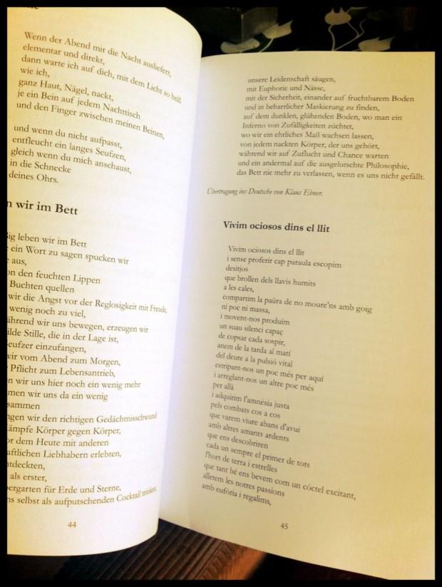 Driesch roser amills traduccion poemas morbo