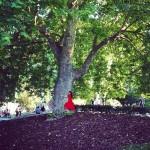 roser amills abrazada a un arbol vestido rojo