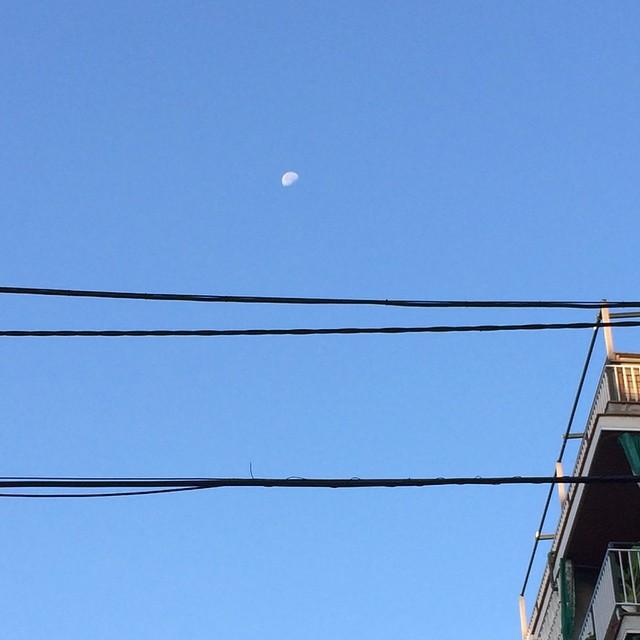 Us mostro la lluna del barri