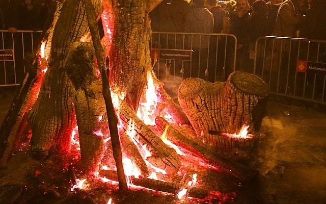 Fogueró entre reixes :(( #fogueronsagracia #sommallorquina