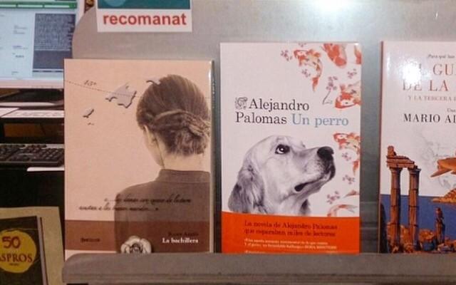 A Lleida ja recomanen #labachillera a la llibreria Punt de Llibre @puntllibre :)) Ets una dona #conexcesodelectura?
