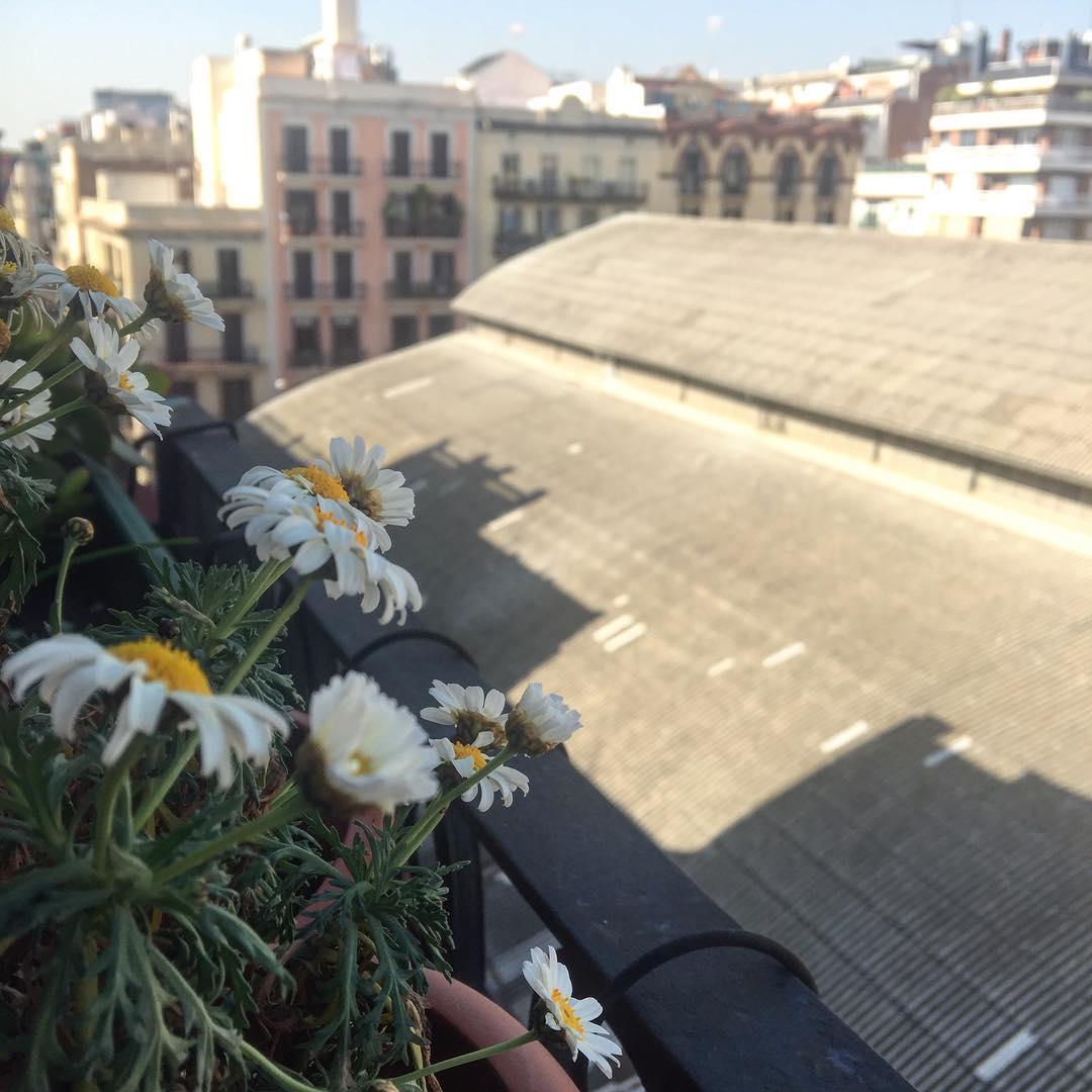 Buenos y primaverales días, @almasbonitas ;))