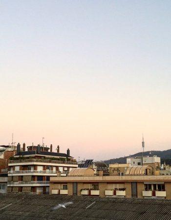 Cuando uno levanta muros, está volviendo a la Edad Media. J. Saramago #buenosdias #bondia #paz