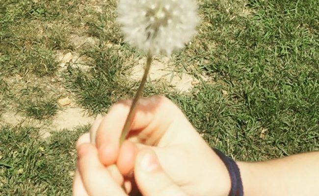 Pedid un deseo, #almasbonitas :))