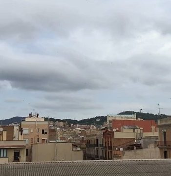 Golondrinas (a cámara lenta) que cantan del #barridegracia a #meudonlaforêt ;))