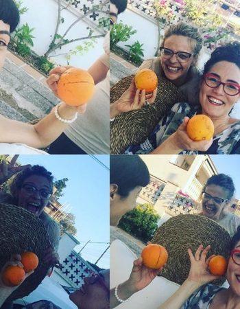 Naranjas recién recolectadas del árbol y sonrisas: nuestra reunión de trabajo empieza bien :))
